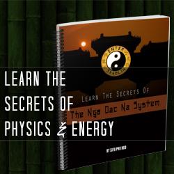 Enter Shaolin - Learn The Secrets of Physics & Energy